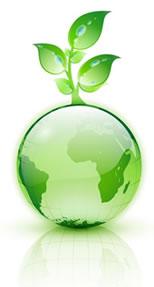 el color verde es usado como emblema de la ecologa de hecho son muchos los productos y articulos que presumen ser ecolgicos utilizan el color verde para