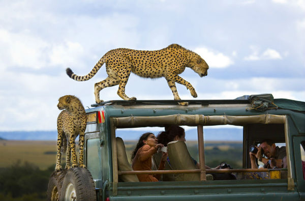 national_geographic3